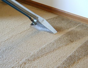 Carpet Cleaning Highlands Ranch CO