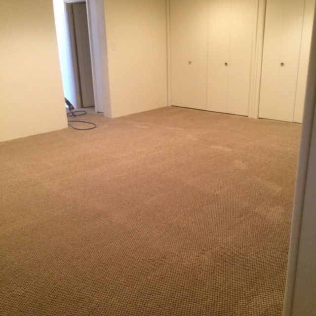 Carpet Repair Services In Denver Colorado Cleaning 5280
