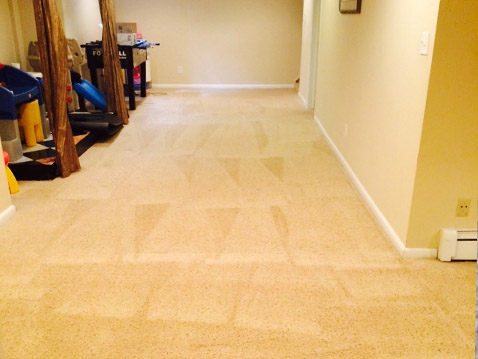Carpet Cleaning Advice for Residents in Denver