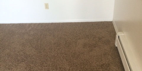 Want Carpets in Your Arvada Home That Last? Pay Attention to These Carpet Cleaning Words of Advice
