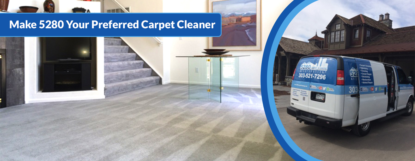 Home About Carpet Cleaning Carpet Repair Restoration