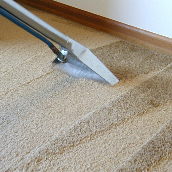 Don't Neglect your Castle Rock Carpeting